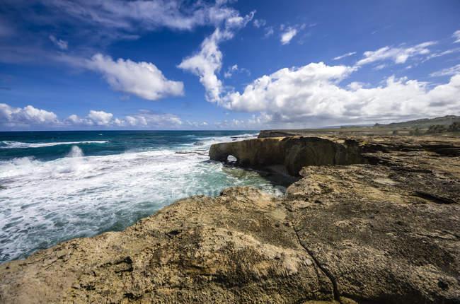 Caraïbes, Antilles, petites Antilles, la Barbade, l'océan Atlantique, côte rocheuse — Photo de stock