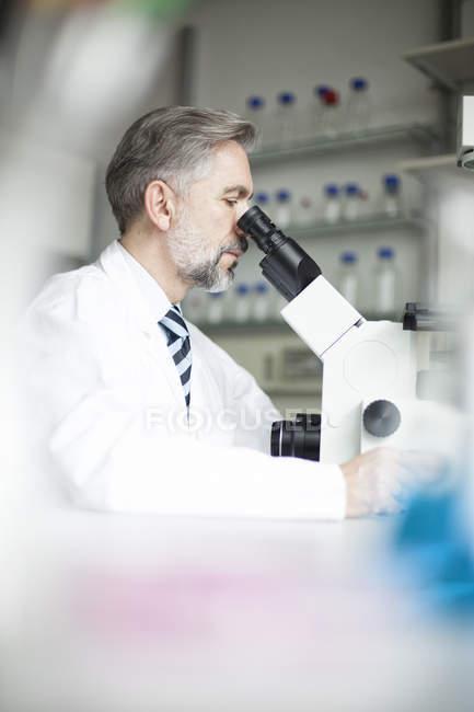 Científico en laboratorio mirando a través del microscopio - foto de stock