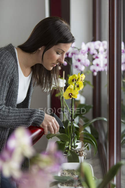 Woman with spray bottle caring about orchid — Stock Photo