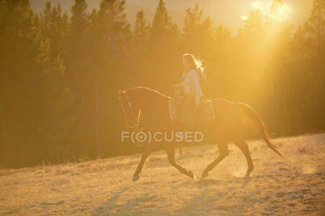 Соединенные Штаты Америки, Вайоминг, прогулка на ковбойщине — стоковое фото