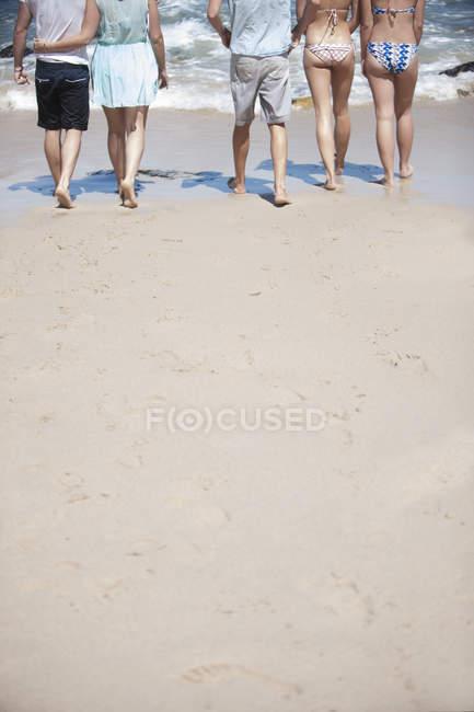 Rear view of Friends walking on beach — Stock Photo