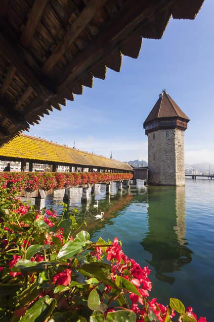 Cantón de Lucerna, Lucerna, Suiza, Reuss río, puente de la capilla y Torre de agua - foto de stock