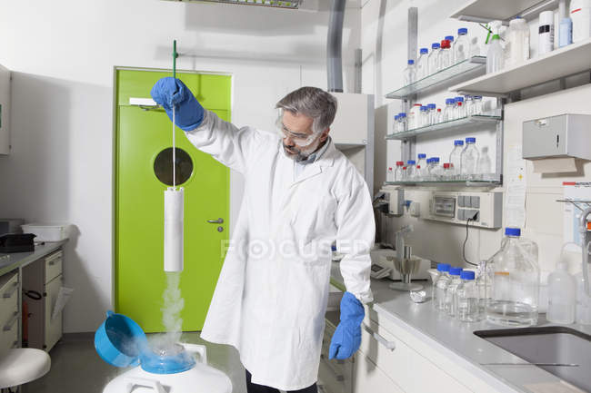 Scientist looking at lab samples in nitrogen — Stock Photo