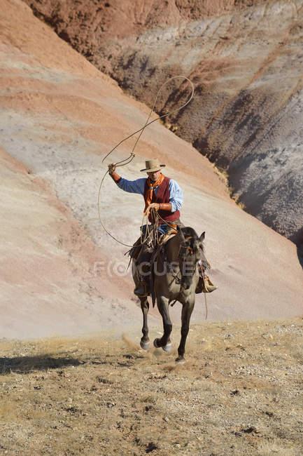 Usa, wyoming, große hornberge, reiten cowboy schwingen lasso — Stockfoto
