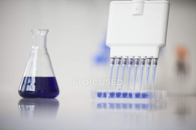 Test tubes and Erlenmeyer flask in laboratory — Stock Photo