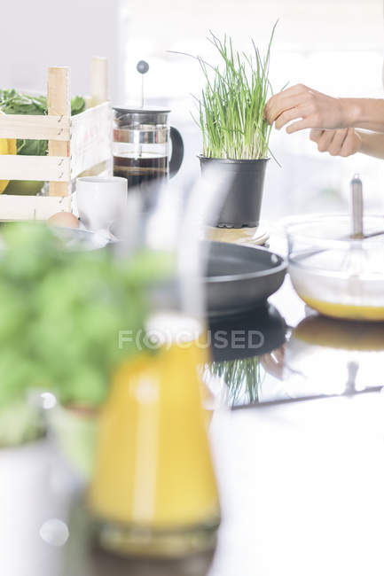 Woman preparing scrambled eggs together in the kitchen — Stock Photo