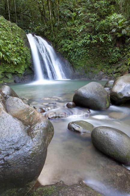 Natural guadeloupe waterfalls — Stock Photo