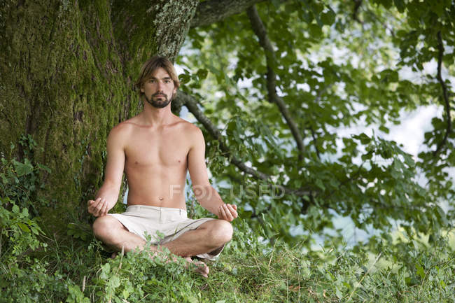 Man meditating under an old lime tree — Stock Photo