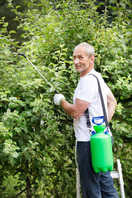 Man spraying plant protection products in the garden — Stock Photo