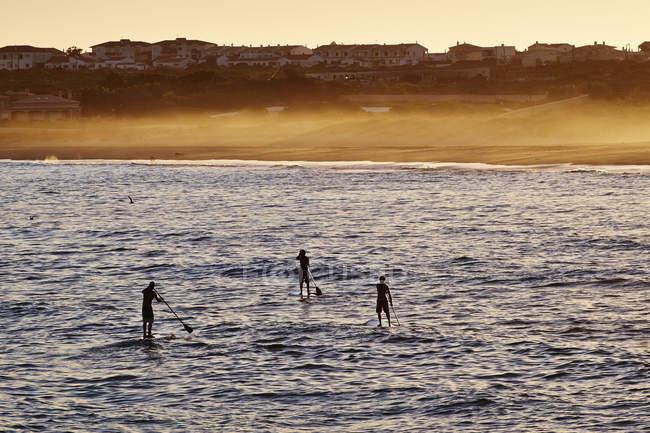 Весло серферів в Martinhal Beach — стокове фото