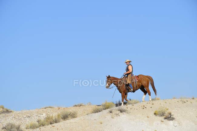 Соединенные Штаты Америки, Вайоминг, ковбой на лошадях — стоковое фото