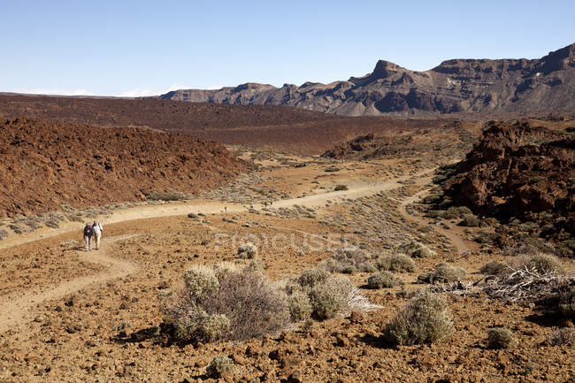 Spain, Canary Islands, Tenerife, hikers at Teide National Park — Stock Photo