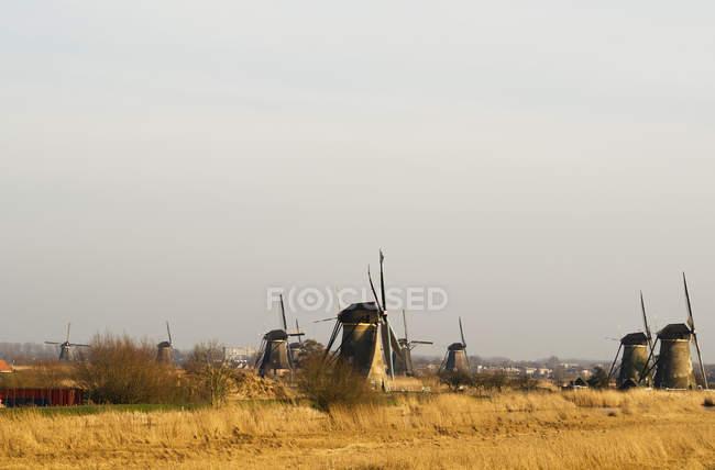 Нидерланды, Киндердейк, традиционные ветряные над полем в дневное время — стоковое фото