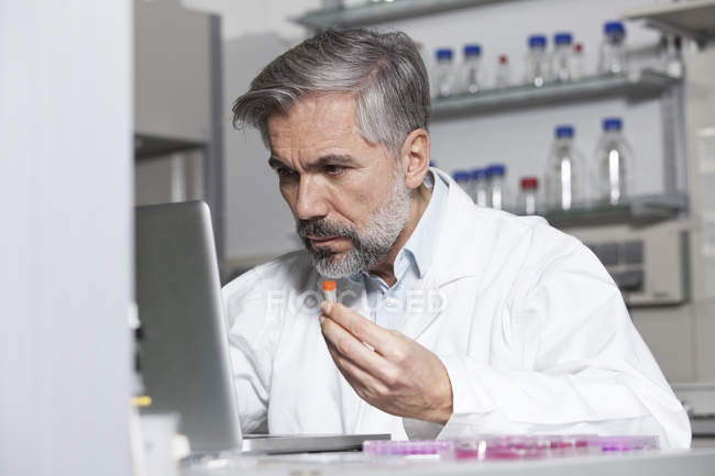 Scientist holding test sample at laptop in laboratory — Stock Photo