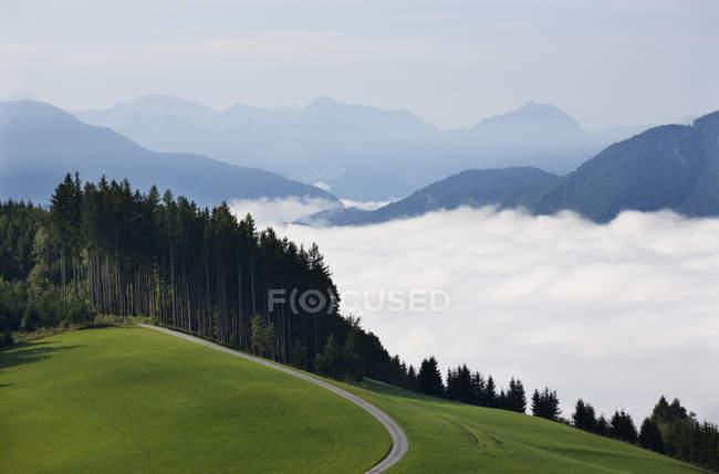 Austria, Upper Austria, Salzkammergut, Mondsee, forest road and clouds — Stock Photo