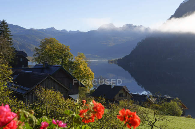 Austria, Styria, Lake Grundlsee at morning and flowers on foreground — Stock Photo