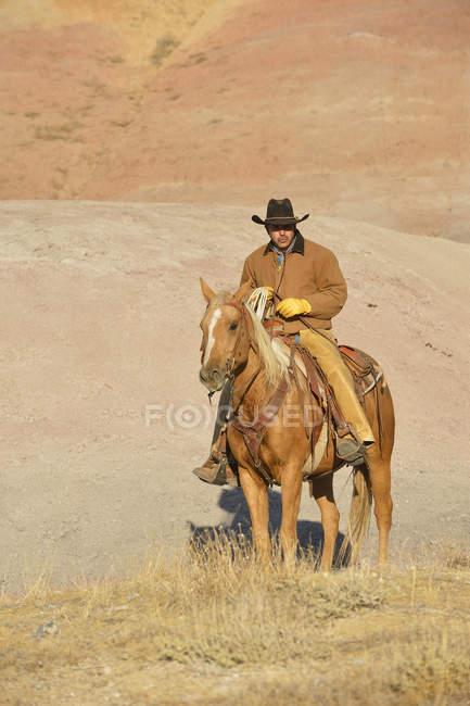USA, Wyoming, Cowboy auf seinem Pferd in badlands — Stockfoto