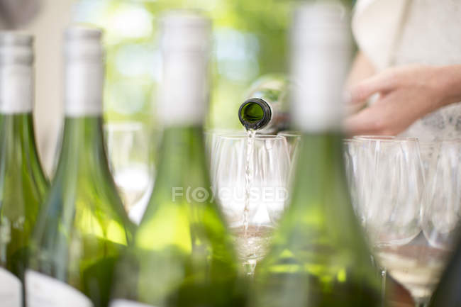 White wine being poured at wine tasting session — Stock Photo