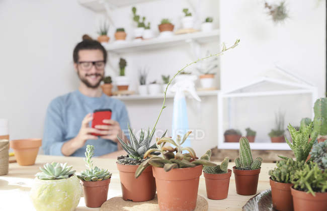 Young man with cell phone behind collection of cacti — Stock Photo
