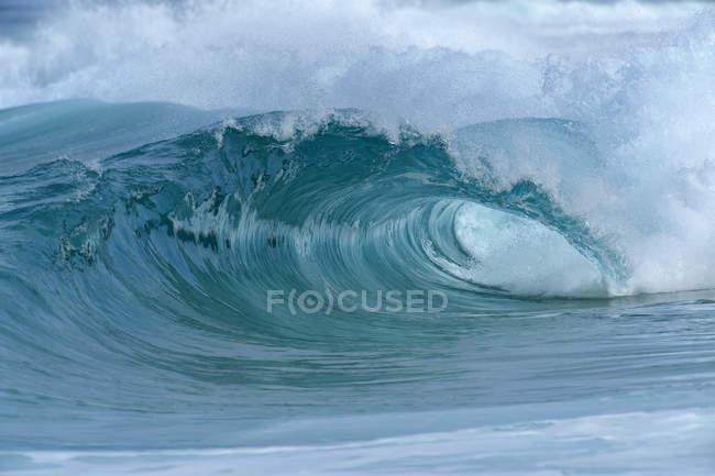 Велика хвиля драматичні. Оаху, Гаваї, США, Тихоокеанські острови Тихого океану. — стокове фото