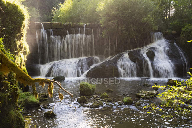 Germany, Bavaria, Allgaeu, Rettenberg, Geratser Waterfalls at forest — Stock Photo