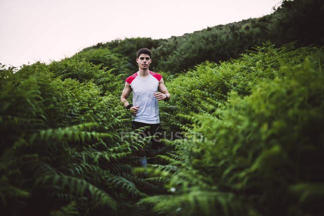 Homem correndo no mato verde de samambaia — Fotografia de Stock