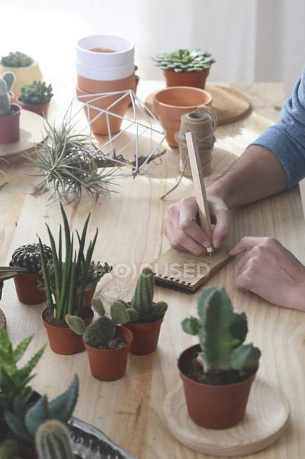Cactus collector taking notes — Stock Photo