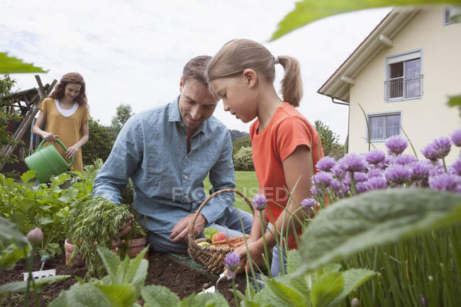Father and daughter gardening together — Stock Photo