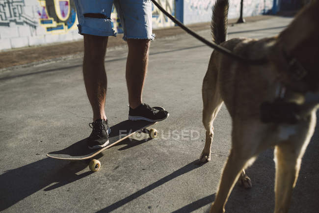 Close-up of Skateboarder with skateboard and dog in skatepark — Stock Photo