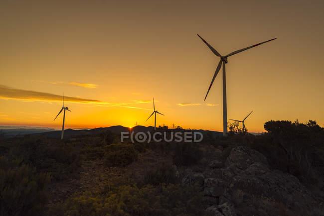 Turbines de vent sur une colline au lever du soleil — Photo de stock