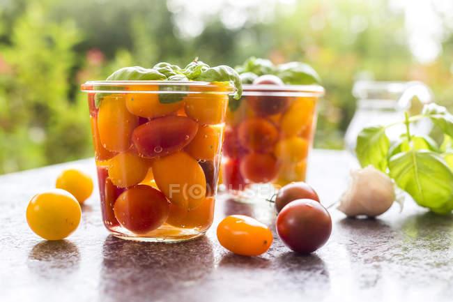 Fermentado tomates na preservação jar — Fotografia de Stock
