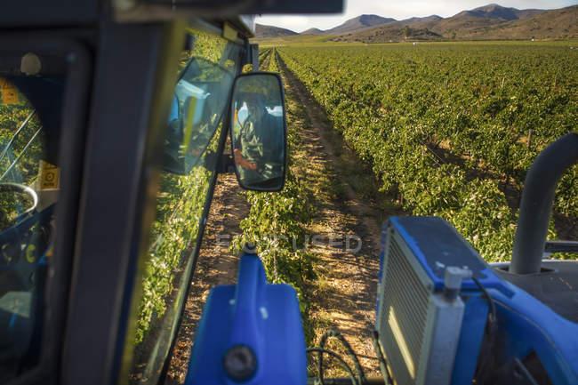 Close-up of Grape harvesting machine in vineyard — Stock Photo