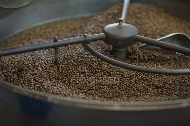 Roasted coffee beans in cooling cylinder — Stock Photo