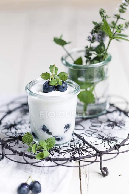 Yogurt con uva blu e menta in vetro su griglia su legno bianco — Foto stock