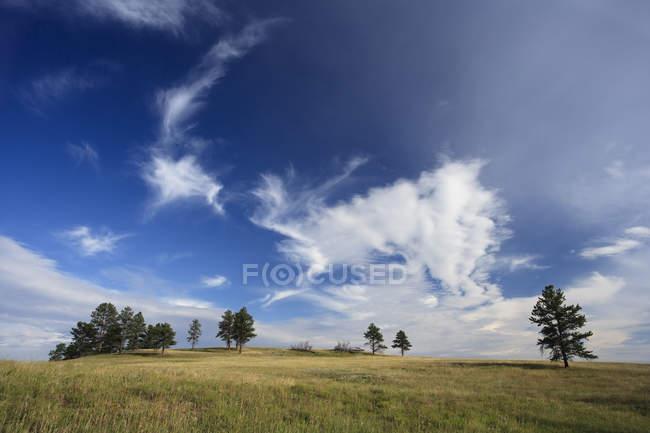 Veduta del paesaggio naturale nel Dakota del Sud, Stati Uniti — Foto stock