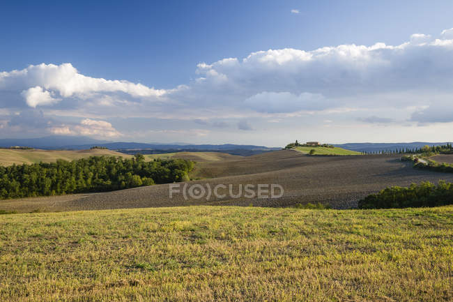 Italy, Tuscany, Siena Province, Crete Senesi, Landscape in autumn — Stock Photo
