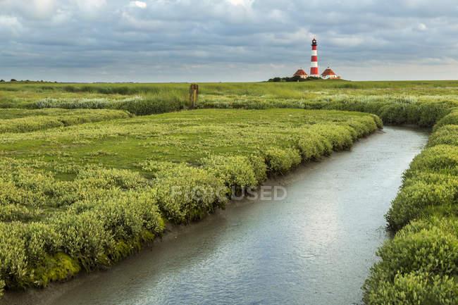 Faro junto al arroyo en la costa cubierta de hierba - foto de stock