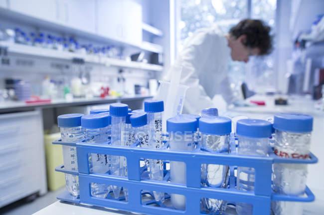 Support pour éprouvettes avec biologiste féminine travaillant dans un laboratoire sur fond — Photo de stock