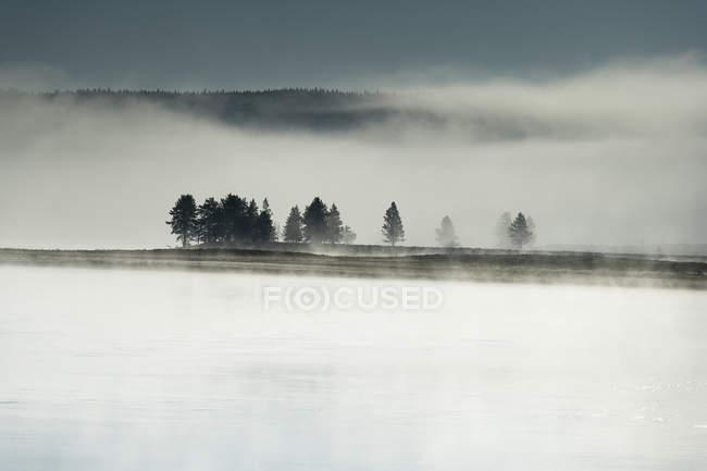 USA, Wyoming, Hayden Valley, Yellowstone National Park — Stock Photo