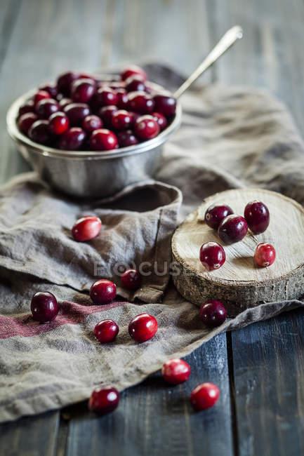 Металевій мисці Журавлина, Брусниця macrocarpon на кухонне рушник і дерева — стокове фото
