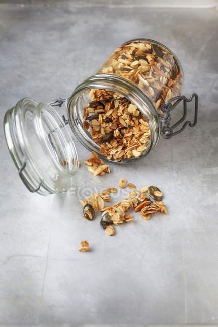 Granola crujiente con avena, semillas de calabaza y almendra astillas en la superficie gris - foto de stock