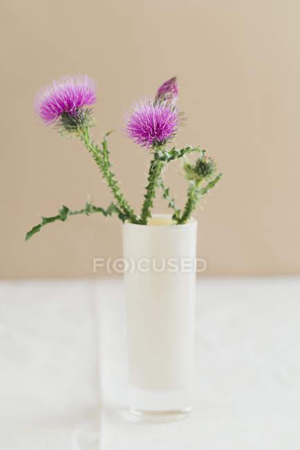 Цветочная ваза с чертополохом на белой ткани — стоковое фото