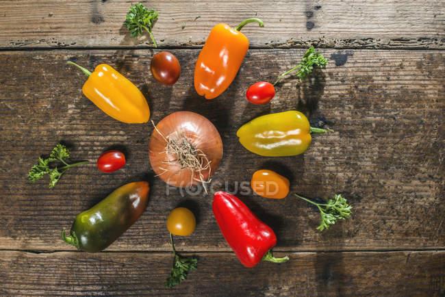 Pimientos multicolores con tomates cherry y perejil - foto de stock