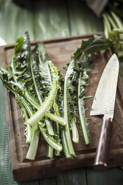 Dandelion leaves and knife on cutting board — Stock Photo