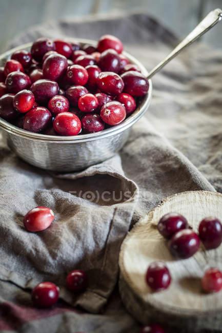 Metal bowl of  fresh cranberries on grey kitchen towel — Stock Photo