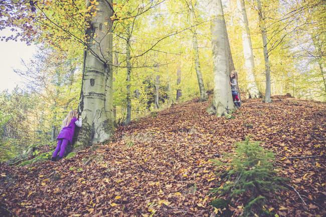 Duas meninas brincando de esconder e procuram na madeira — Fotografia de Stock
