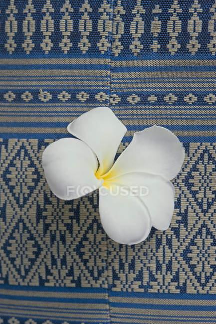 Vista close-up da flor de Frangipani no tecido tradicional — Fotografia de Stock