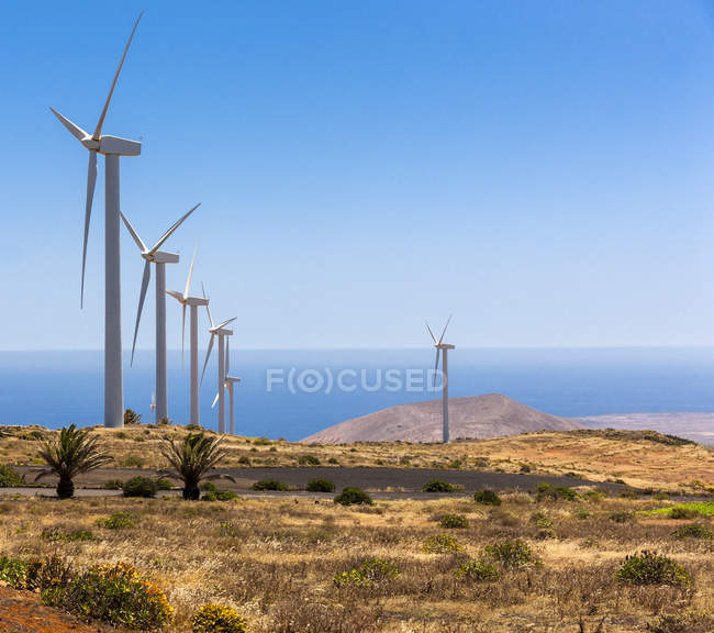Spain, Canary Islands, Lanzarote, Los Valles, Wind wheels — Stock Photo