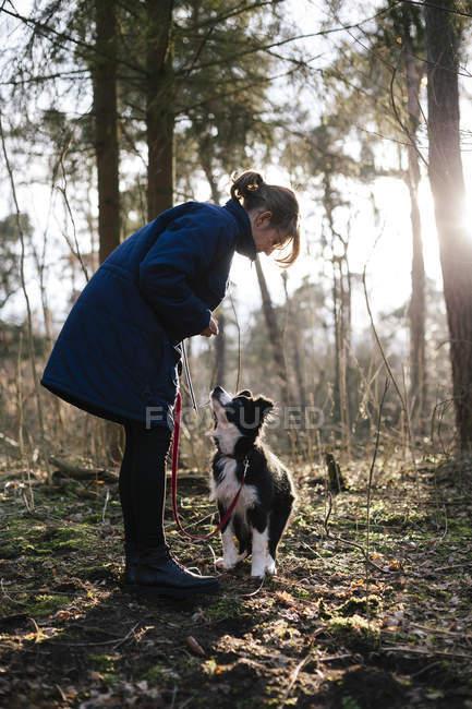 Donna con Border Collie nella foresta — Foto stock