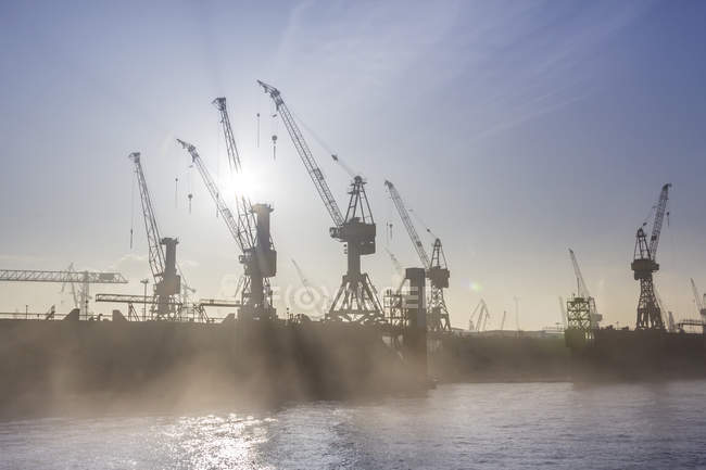 Germany, Hamburg, silhouette of cranes in the fog over the Elbe river — Stock Photo